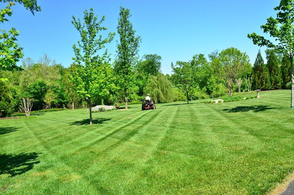 Lawn Care (30).jpg
