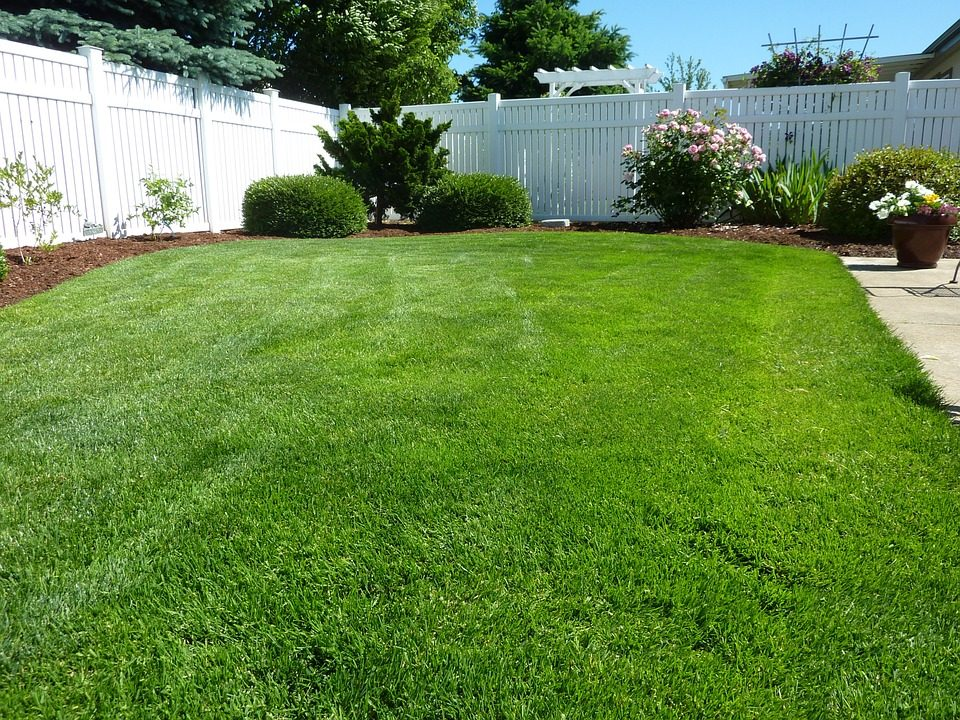 Lawn Care (32).jpg