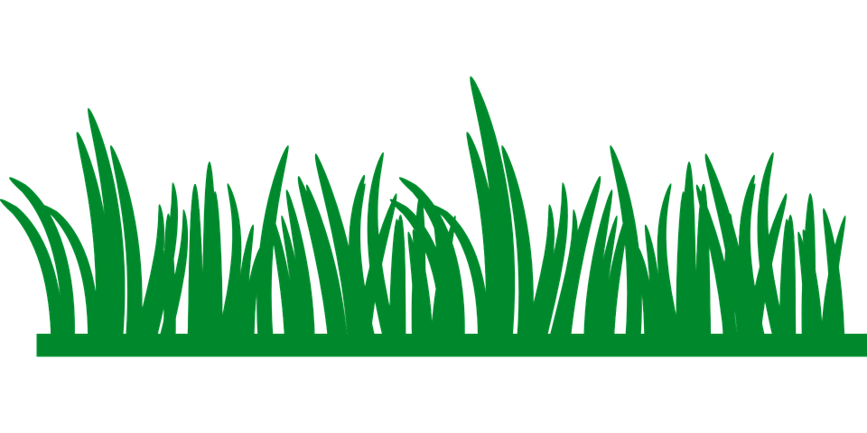 Lawn Care (2).png