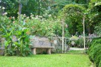 Lawn Care (61).jpg