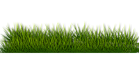 Lawn Care (6).png