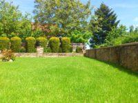 Lawn Care (44).jpg