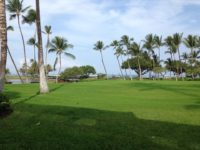 Lawn Care (46).jpg