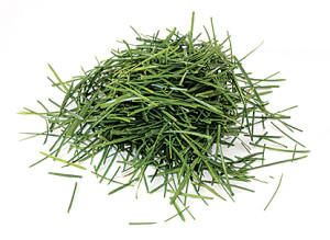 grass_clipping