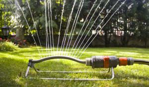 watering-a-lawn-sprinkler